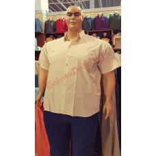 Бежова риза с къси ръкави 3XL - 4XL - 5XL - 6XL 100% варен памук